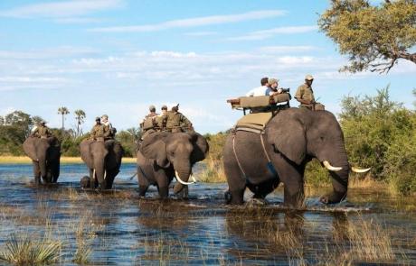 botswana-okavango1