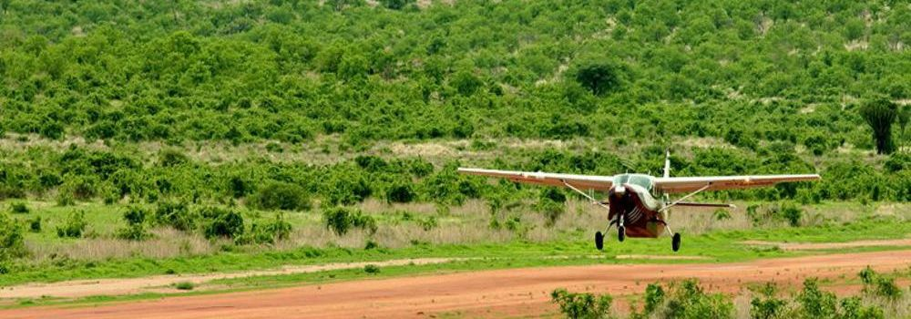 flying-safaris5